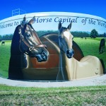 tank painting, tank coatings, horse capital of the world